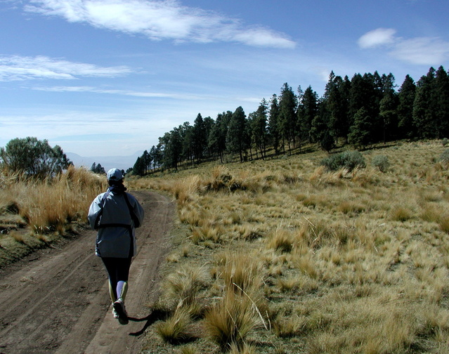 Woman motivated to trail run